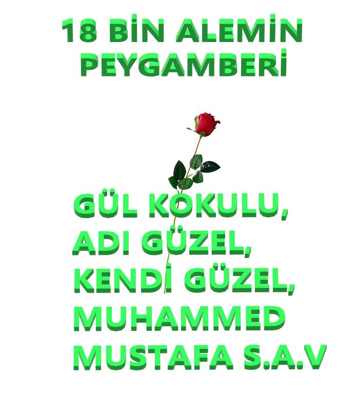 Hz. Muhammed Mustafa S.A.V 'i Layıkıyla Anlatan Bir Liderdi O